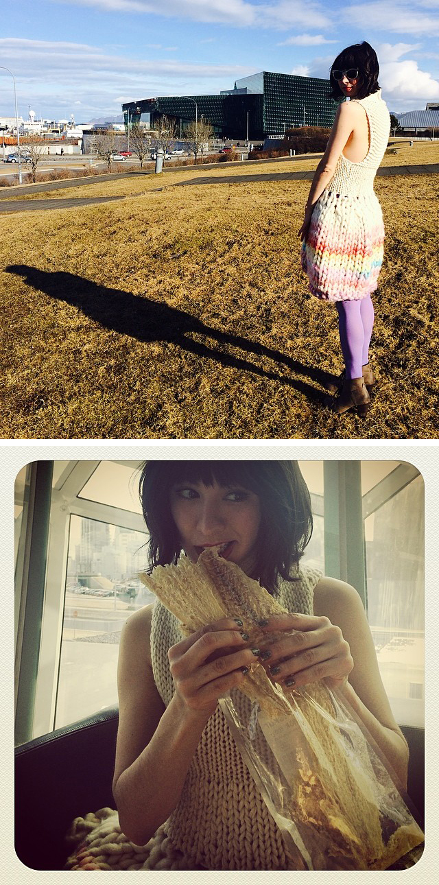 cirilia_rose_iceland_dress_2up